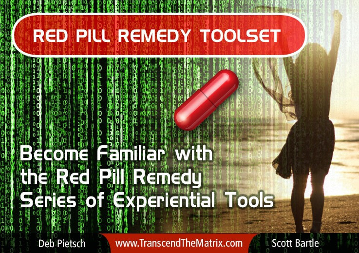 Red Pill Remedy Series Explained