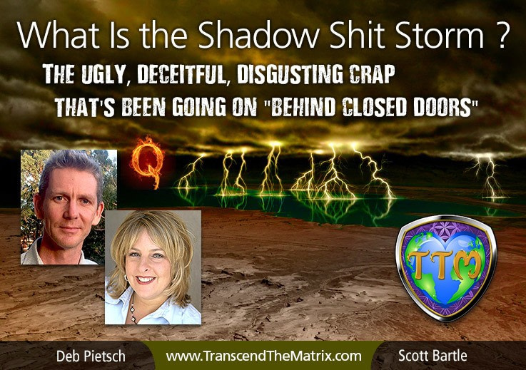 DE What Is Shadow ShitStorm Transcend Matrix Scott Bartle Deb Pietsch